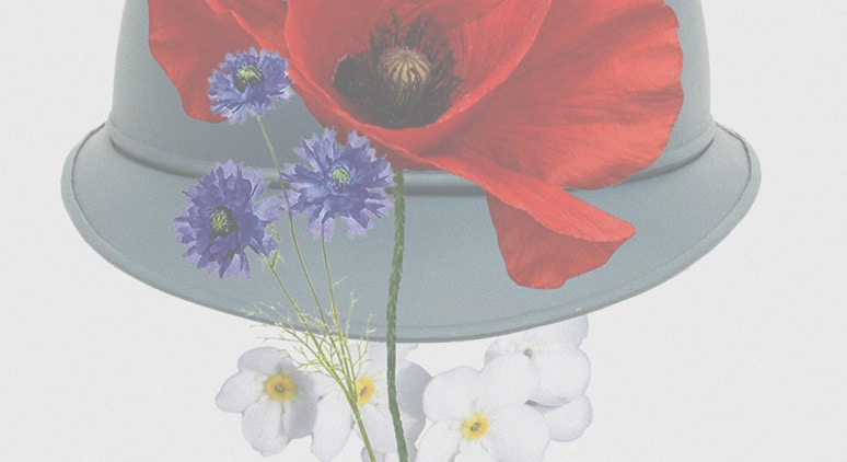 In Memoriam: in memory of World War I